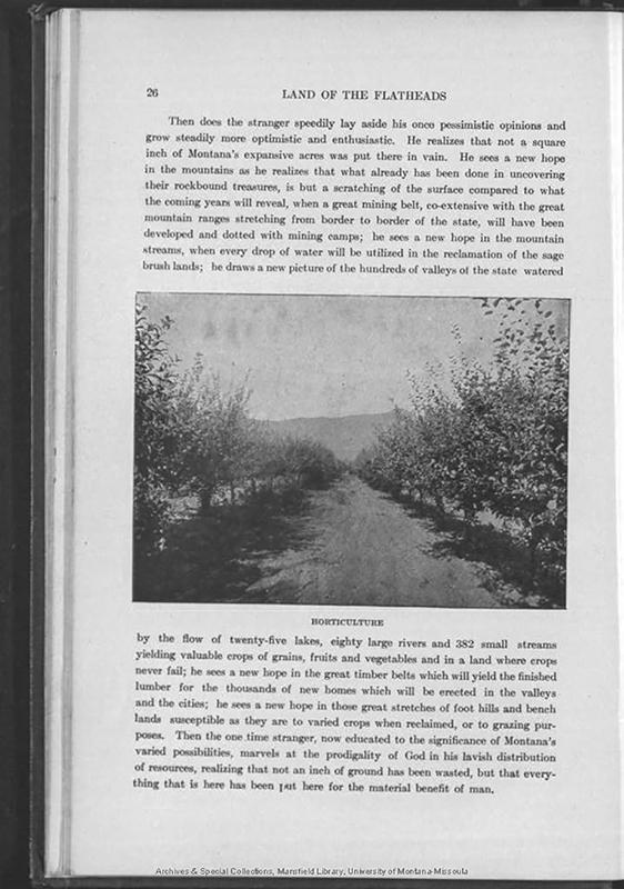 F737J6S61905_Page_028.jpg