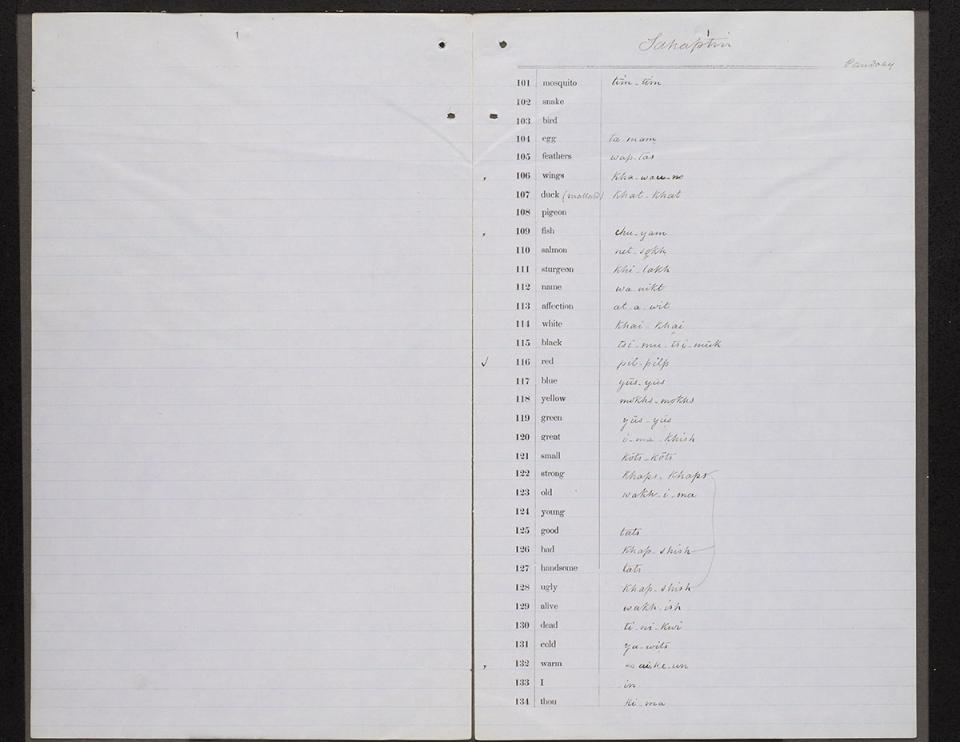 naa-MS681b_x003.jpg