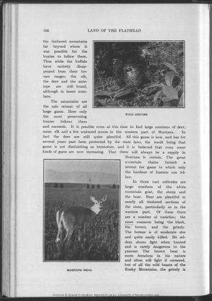 F737J6S61905_Page_108.jpg